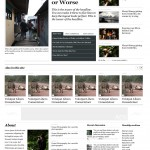 vvs-the_journal